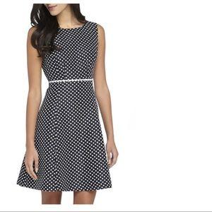 Tahari Polka Dot Jacquard Fit & Flare Dress